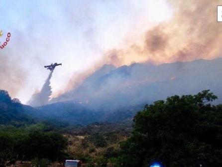 Hunderte Waldbrandeinsätze auf Sizilien - Hitze in Südeuropa