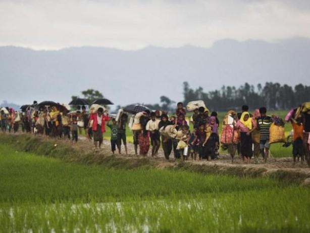 Geld dringend benötigt: Mehr als 120 000 Rohingya vor Gewalt aus Myanmar geflohen