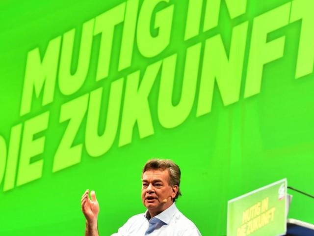 Kogler will Grünen-Chef bleiben und stellt sich Wiederwahl