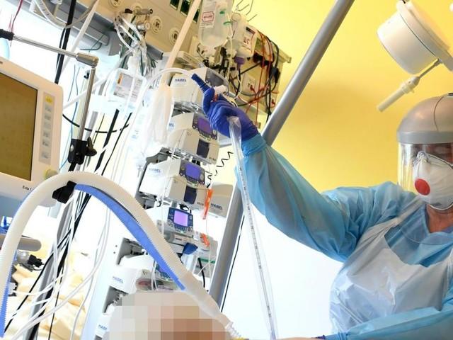 Corona: Bei WHO gemeldete Todeszahlen stark gestiegen
