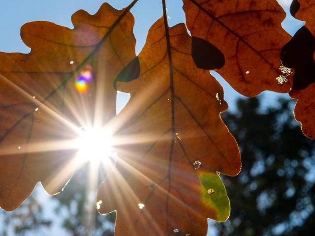 Bis zu 26 Grad: Am Wochenende kommt der Spätsommer zurück