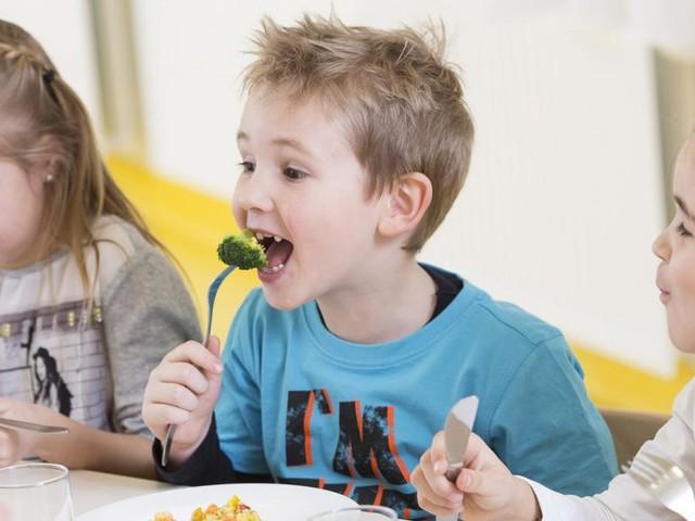 Bio-Essen in Schulen schmeckt nicht allen Parteien