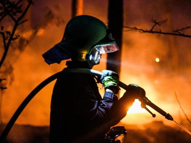 """Höchste Waldbrandgefahr im ganzen Osten: """"Einweggrills sind wirklich ein Fluch!"""""""