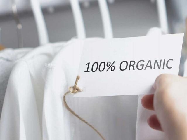 McKinsey-Bericht: Nachhaltigkeit ist das neue Must-have der Modebranche