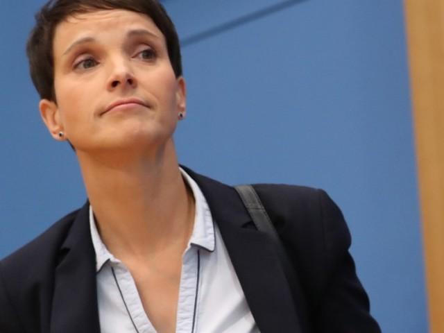 """""""Die Blaue Partei"""" soll offenbar Petrys neue Heimat werden"""