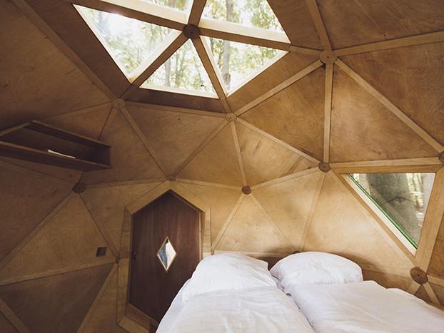 In den Baumwipfeln schlafen – im Baumhotel Robins Nest in Hessen
