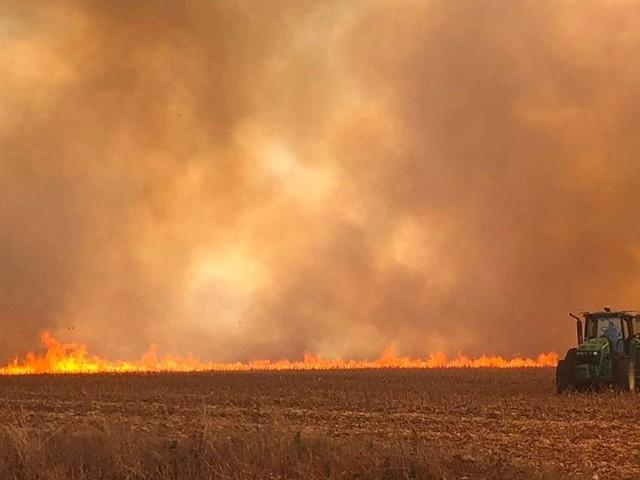 Brände in Brasilien: Berlin will Mercosur-Abkommen erhalten