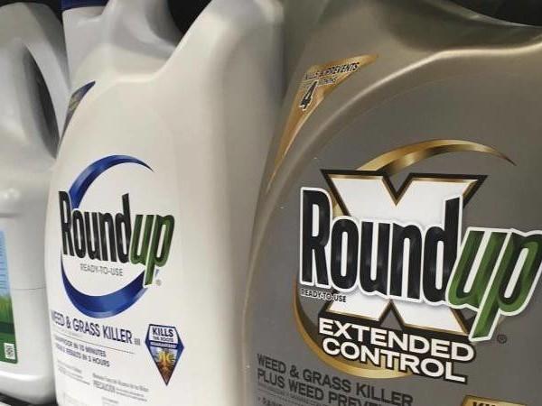 25 statt 80 Millionen Dollar: US-Richter senkt Bayer-Strafe in Glyphosat-Prozess deutlich