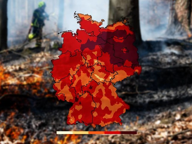 Der Osten glüht feuerrot: höchste Waldbrandgefahr in Teilen Deutschlands