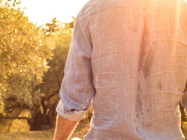 Probleme mit Herz, Hormonen, Haut - Wenn Schwitzen nicht harmlos ist: Diese Krankheiten können dahinter stecken