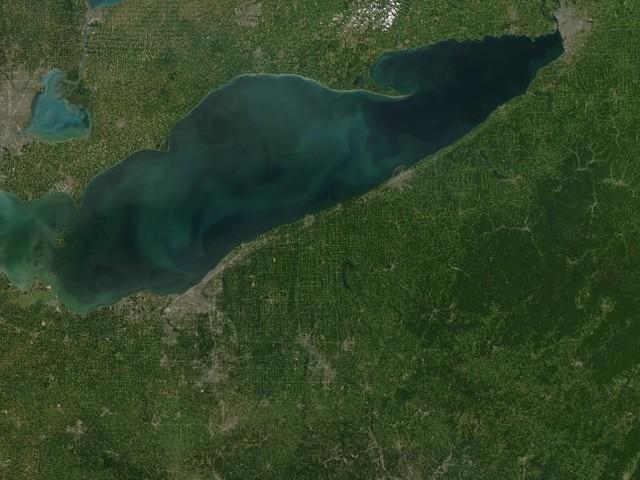 Satellitenbilder ausgewertet: Algenblüten nehmen weltweit zu