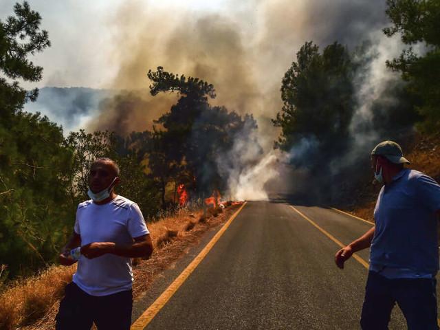Hitzewelle überrollt Mittelmeerraum: Waldbrände wüten in Touristengebieten - Hotels und Dörfer evakuiert