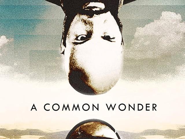 A Common Wonder von Amerigo Gazaway   Das epische Stevie Wonder x Common MashUp Album