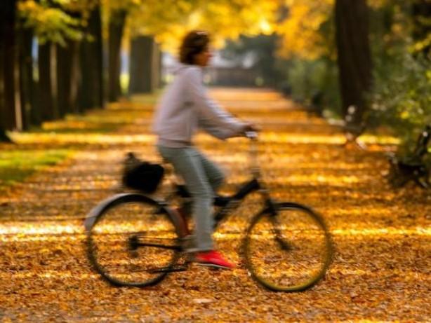 Mehr Bewegung hilft: Steifen Gelenken frühzeitig entgegenwirken