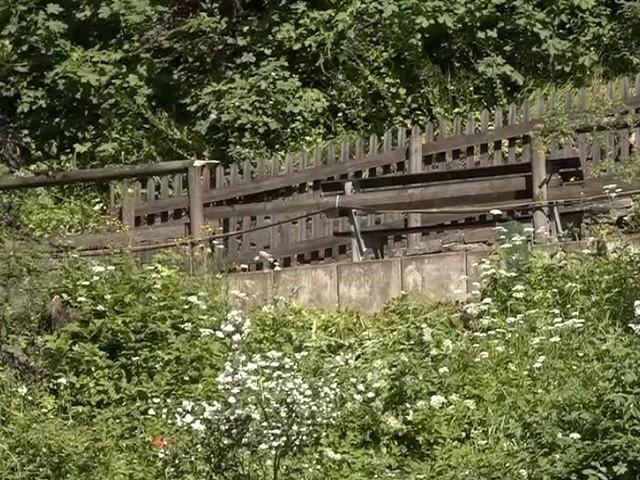 Unglück bei Goslar - Vier Grundschüler stürzen auf Klassenfahrt Abhang hinab - Mädchen in Lebensgefahr