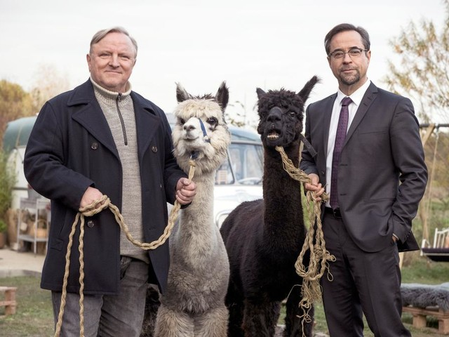 """Tatort heute aus Münster: So wird """"Rhythm and Love"""""""