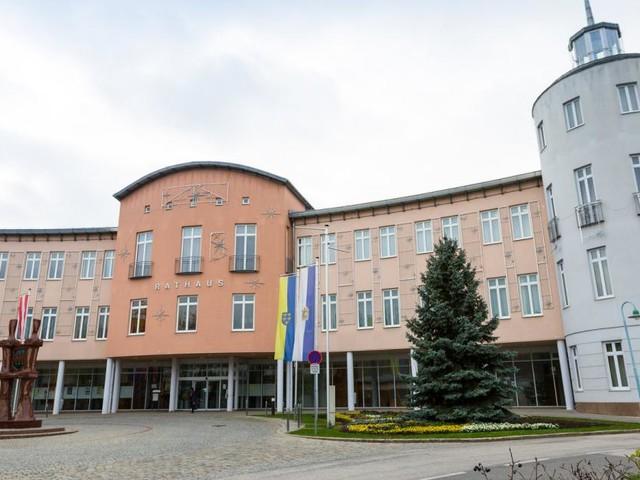 """Stadt Schwechat: Es wird """"wild"""" im Gemeinderat"""