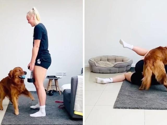 """Flauschiger """"Trainingspartner"""": Workout mit Hindernissen: Hund macht Sportlerin das Leben schwer"""