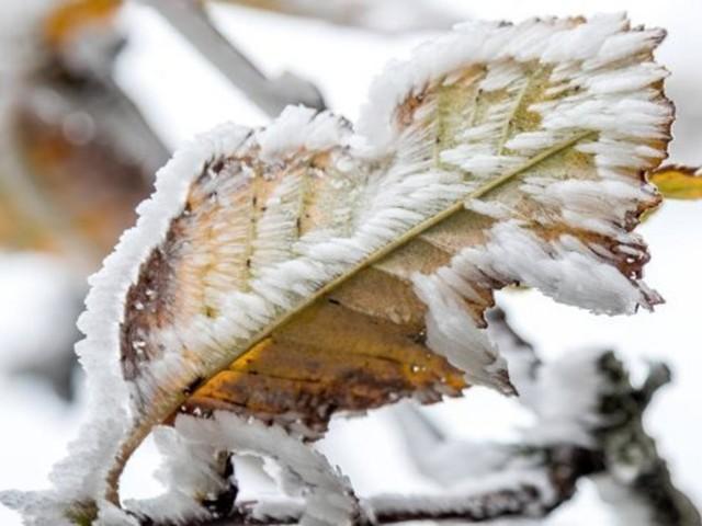 Zweistellige Minusgrade: Jetzt kommt der Winter nach Deutschland