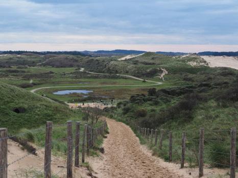Meine fünf Lieblingstouren im Nationalpark Zuid-Kennemerland