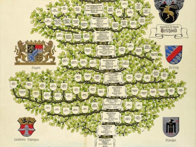 Stammbaum erstellen lassen ahnenforschung pro heraldica for Pro heraldica