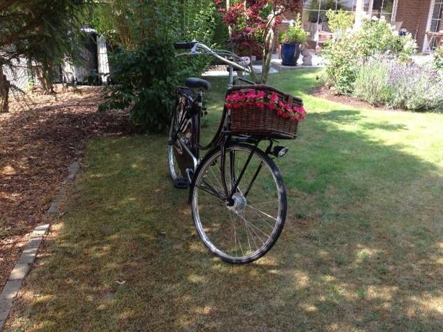 Batavus Old Dutch Damenrad in Nordkirchen