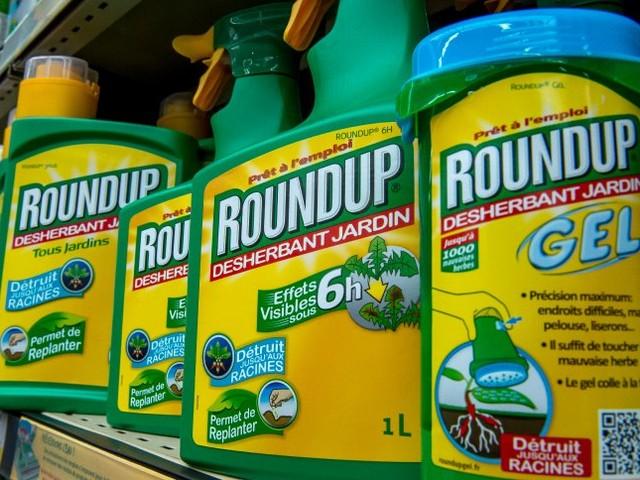 Glyphosat-Urteil: Gericht will Milliarden-Strafe für Bayer drastisch reduzieren
