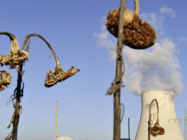 """Atomkraftwerk Isar 2 vor der Abschaltung - Betreiber ist wehmütig: """"Es fällt nicht leicht"""""""