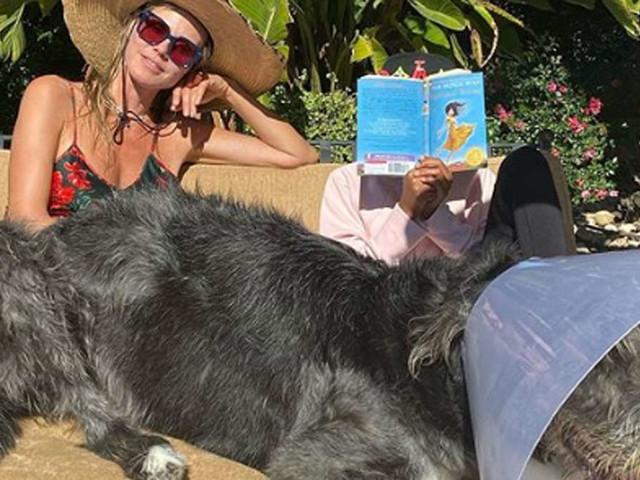 """Heidi Klum postet Foto mit Familie - Fans irritiert: """"Was ist mit dem armen Hund los?"""""""