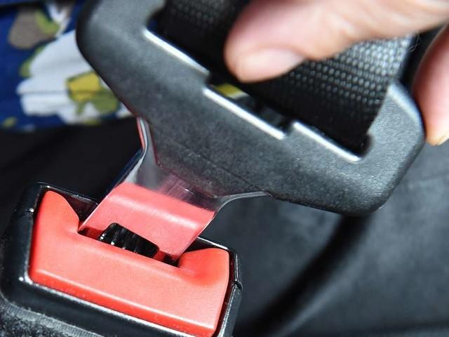 Polizei kontrolliert Ford Focus - Beamte blicken in Auto und machen erschreckende Entdeckung