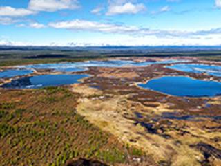 Tundra: Feuer wirkt lange nach