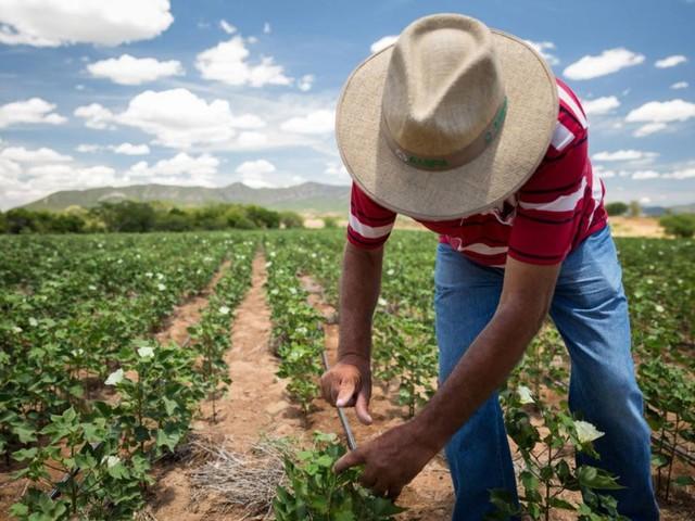 10 nachhaltige Initiativen des Monats Juni 2019
