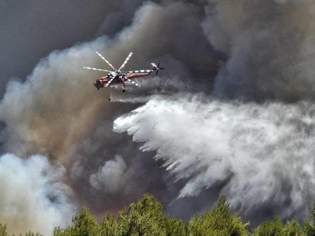 Italien, Türkei, Griechenland: In diesen Teilen Europas wüten Waldbrände