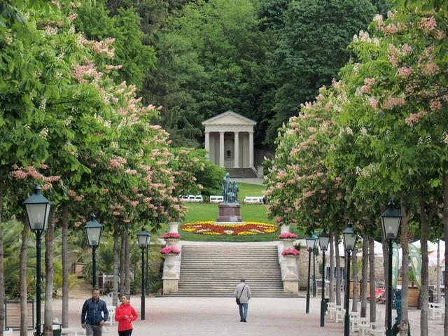 Die grüne Klimaanlage in der Stadt Baden