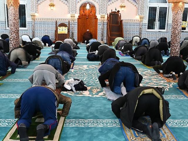 Muslime in Deutschland: Nachholbedarf bei Bildung