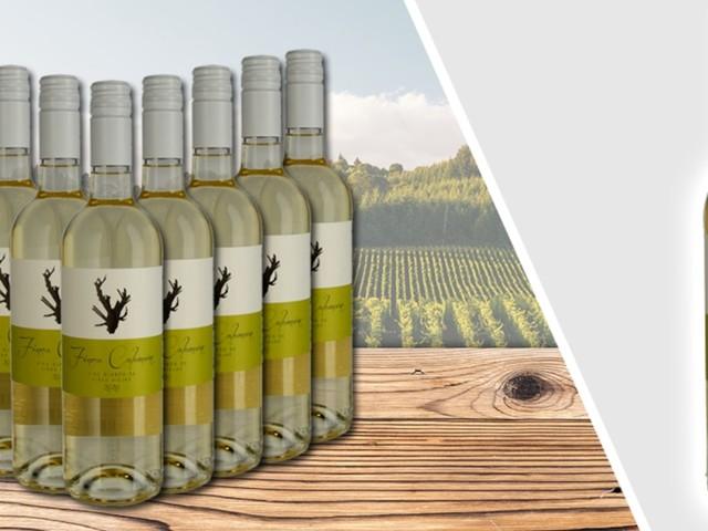Shopping-Deal mit FOCUS Online - Das gab's noch nie! 65 Prozent Rabatt sichern auf 10 Flaschen exquisiten spanischen Weißwein