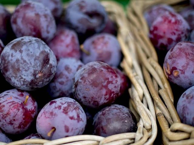 Pflaumen: So gesund ist das beliebte Obst