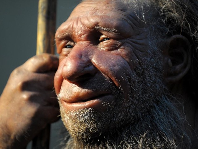 Unsere Neandertaler-Gene wirken sich auf Covid-Erkrankungen aus