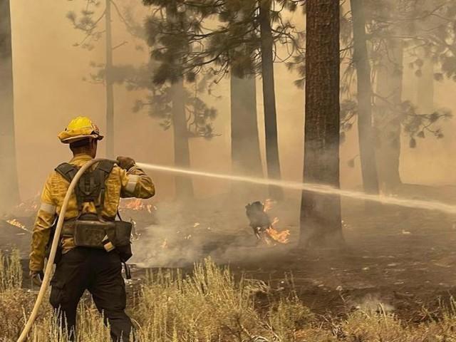 Brände am Lake Tahoe - über 4100 Feuerwehrleute im Einsatz