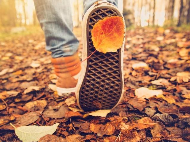 Der Herbst startet schön – ohne Regen bleibt er aber nicht