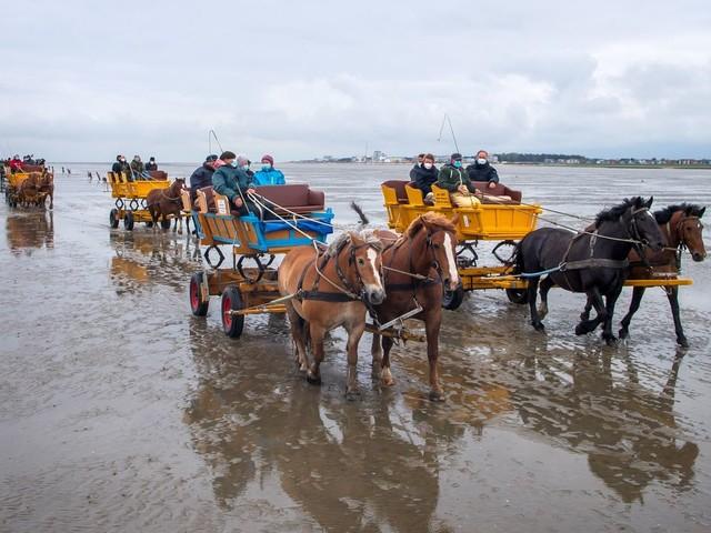 Neuwerk: Inselbewohner protestieren im Watt - Angst um Erreichbarkeit