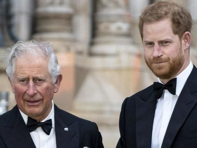 Bereut Prinz Harry inzwischen, seiner Familie den Rücken zugekehrt zu haben?