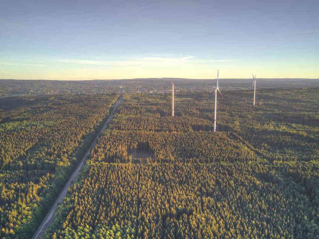 Widerstand gegen neue Anlagen: Naturschützer machen Stimmung gegen Windkraft