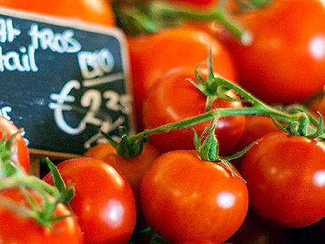 Wo kommen die holländischen Tomaten her?