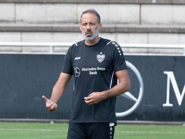 Bundesliga: Jobgarantie für Matarazzo - Hohe VfB-Ablöse für Kalajdzic