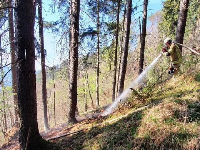 Waldbrandgefahr in Krems: Rauchen und Feuerentzünden verboten