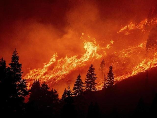 Lake Tahoe: Waldbrände bedrohen beliebtes Ausflugsgebiet in Kalifornien