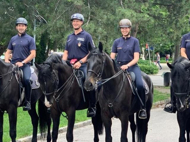 Startklar für Einsatz: Zwei neue Pferde aus Orbáns Reiterstaffel