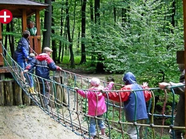 Waldretter: Zurück zu den Wurzeln auf dem Naturerlebnispfad in Meerhof