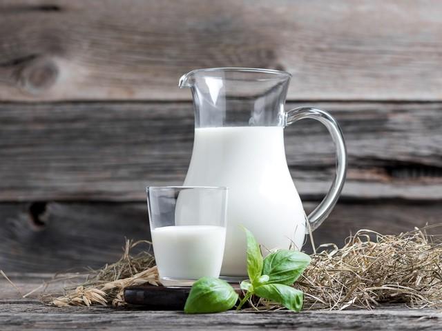 Macht hoher Milch-Konsum die Knochen brüchiger?